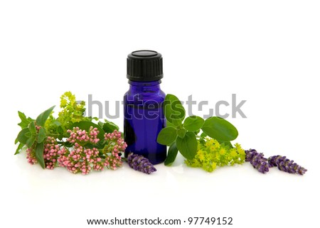 Lavender herb,valerian, ladies mantle flower heads with marjoram leaf sprigs and aromatherapy blue glass bottle isolated over white background. - stock photo