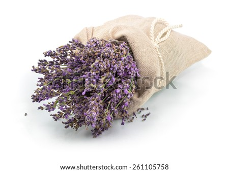 Lavender in a sack with tie isolated on white background - stock photo