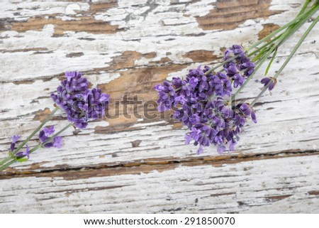 Lavender on rustic wood background