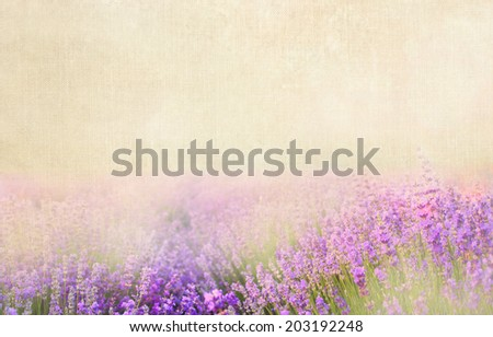 Lavender textile image over canvas fabric. - stock photo