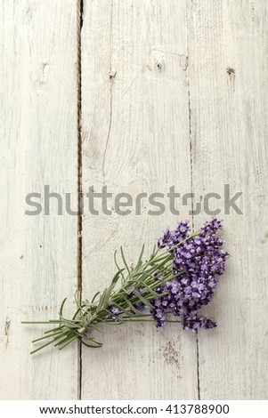 Lavender twigs lying on a textured grunge background - stock photo