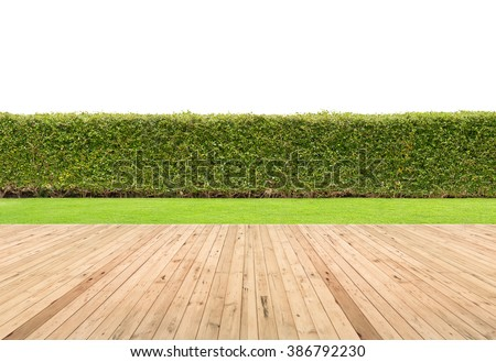 Lawn and wooden floor with hedge isolated. - stock photo