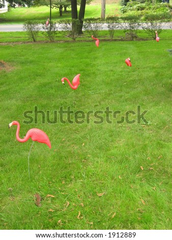Lawn decorated with kitschy pink plastic flamingos.