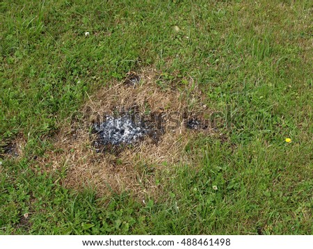 Lawn grass damaged by burning coal from barbecue.