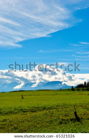 lawn in the fall in the valleys of the Dolomites - stock photo