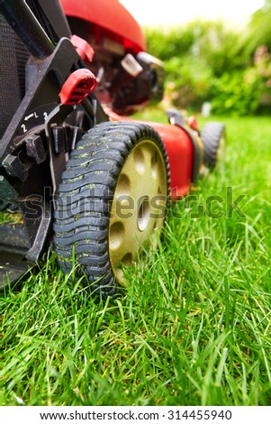 Lawn mower cutting green grass in backyard.Gardening background. - stock photo
