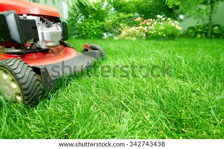 Lawn mower cutting green grass in backyard.Gardening background. - stock photo