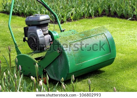 lawn mower in the green