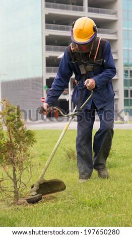 Lawn mower man worker cutting green grass near thuja tree - stock photo