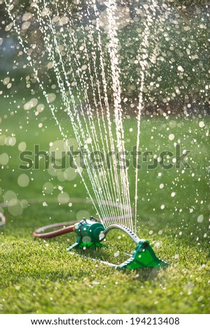 Lawn sprinkler spaying water over green grass. Irrigation system. soft backlight, shallow depth of field blurred bokeh sun effect - stock photo