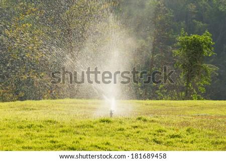 Lawn sprinkler watering - stock photo