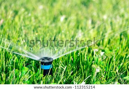Lawn sprinkler watering green lawn - stock photo