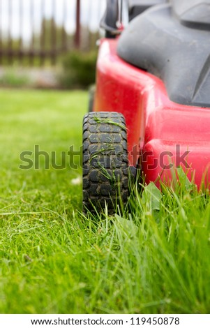 lawnmower. Freshly cut grass by red lawnmower. - stock photo