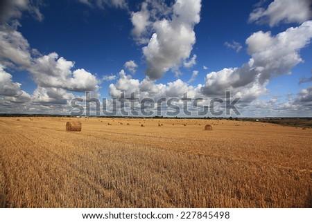 lay hay on field clouds sun - stock photo