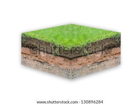 Layer of soil beneath section - stock photo