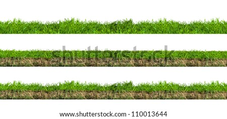 Layers of green grass section with soil isolated on white