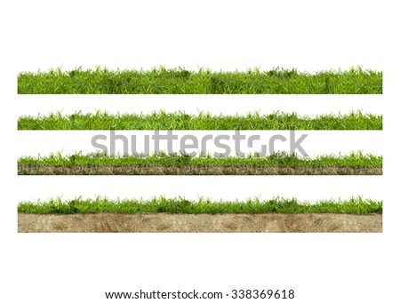 Layers of green grass section with soil isolated on white - stock photo