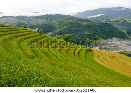 layers of rice terrace