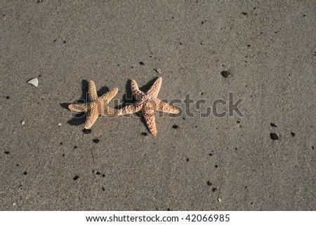 laying on Beach - stock photo