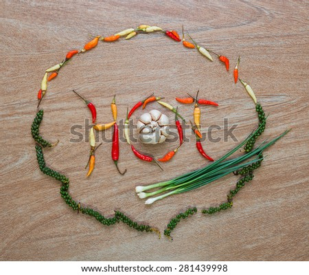 Layout of multicolor peppers, onoin and garlic forming a word on a wooden background - stock photo