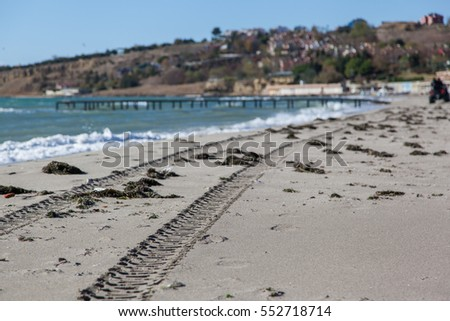 Leading tracks on empty beach