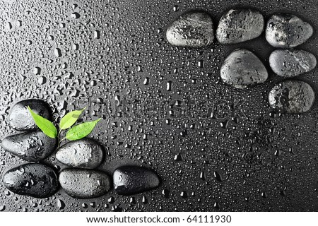 leaf and basalt stones on the black background - stock photo
