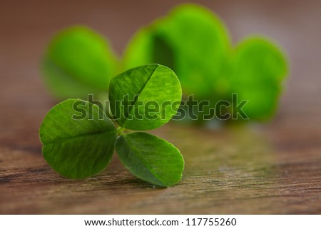 leaf clover on wood background - stock photo