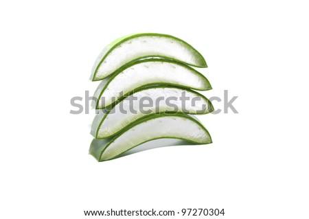 leaf of aloe on white background - stock photo