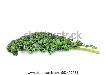 leaf of kale cabbage  isolated on white background