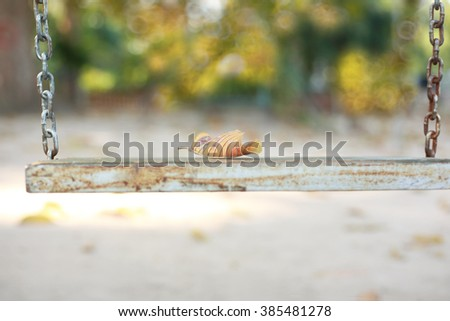 Leaf on chain swings hanging in garden.Selective focus and very shallow depth of field composition,soft vintage toned picture. - stock photo