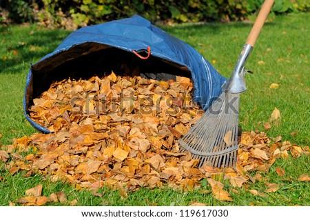 Leaf rake - stock photo