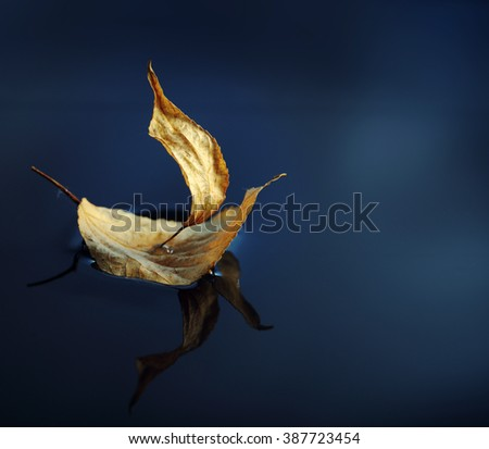 leaf ship in blue water - stock photo