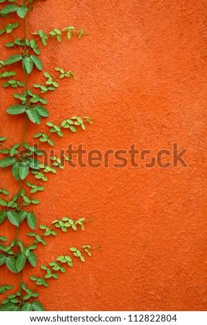 Leaf wall orange cement - stock photo