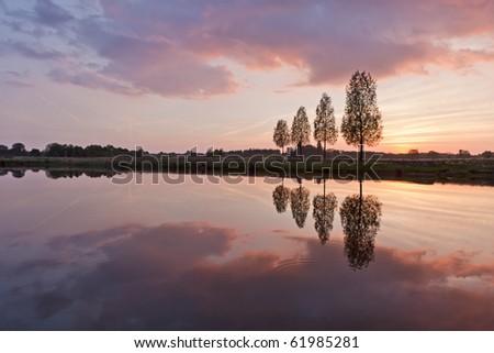 Leafless tree near lake on sunset background sky - stock photo