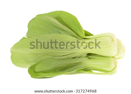 Leafy Green Cabbage On White Background - stock photo