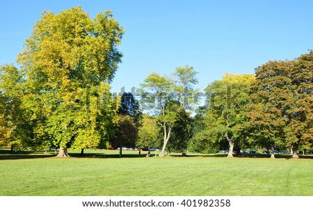 Leafy Treeline and Lush Lawn in a Beautiful Green Park - stock photo