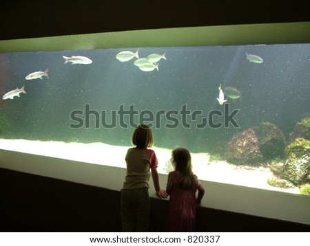 Learning Experience: Two children sharing a learning experience at the aquarium - a wonderful place to learn about aquatic creatures. - stock photo