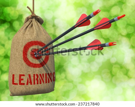Learning - Three Arrows Hit in Red Target on a Hanging Sack on Natural Bokeh Background. - stock photo