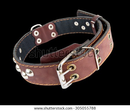 Leather collar for dogs with metal rivets. Isolated. - stock photo