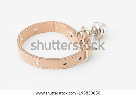 leather dog collar - stock photo