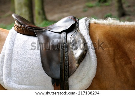Leather saddle horse close up. - stock photo