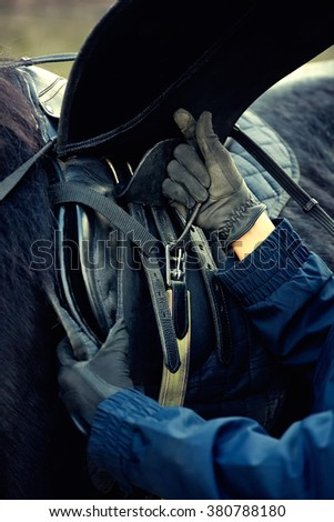 Leather saddle horse getting ready close up details - stock photo