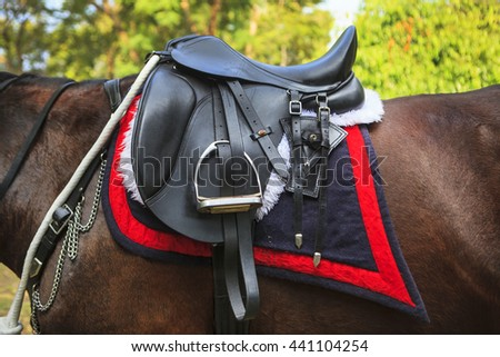 Leather saddle on a back of a brown horse - stock photo