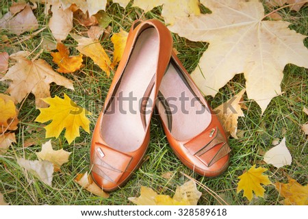 Leather shoes with autumn leaves. Shoes collection sales - stock photo