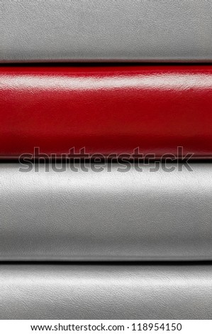 Leather striped pattern with one bright red line