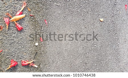 leaves and floral placements with stone background texture