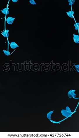 leaves and flower color, leaves and flower background pattern, abstract beauty background. - stock photo