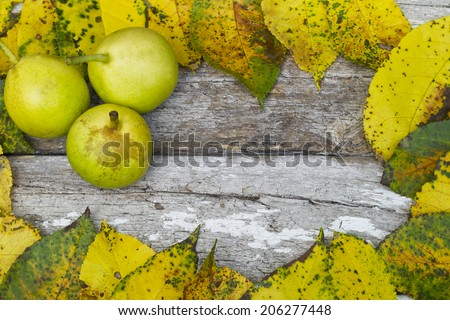 leaves and pear on a wooden background - stock photo