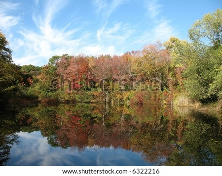 leaves changing color in the fall, reflected on a pond along with the sky