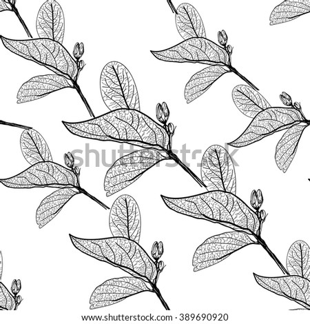 Leaves contours on white background. floral seamless pattern, hand-drawn.